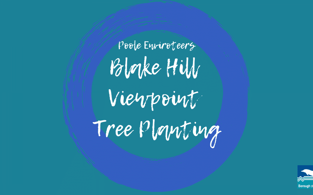 Make a Note in Your Dairy for Blake Hill Tree Planting!