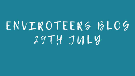 Enviroteers Blog – 29th July