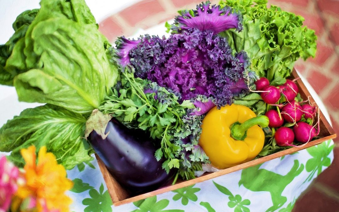 Tips for Growing a High-Yield Vegetable Garden Anywhere