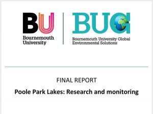 Download the BUG report summary