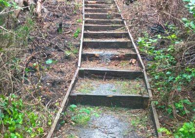 Repair steps