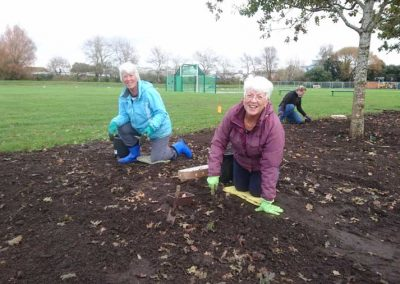 More than 3,000 bulbs planted by the Friends of Hamworthy Park, 4th November
